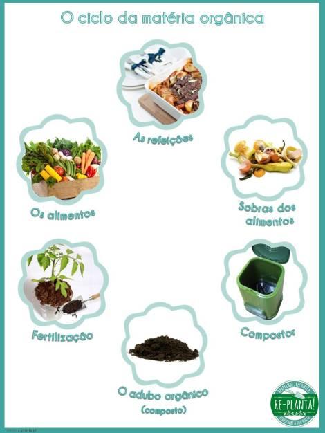 ciclo mat organica