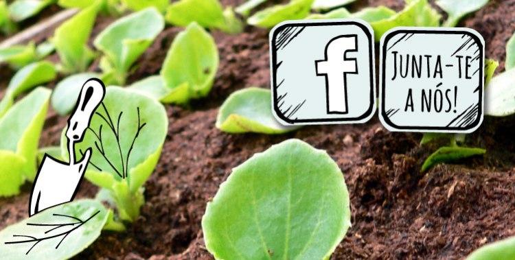 img-facebook1