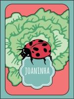 carta-joaninha